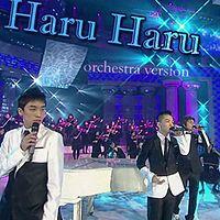 Haru Haru (Orchestra Version).mp3