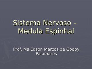 Medula espinhal.ppt