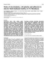 Roles of microtubules, cell polarity and adhesion in.pdf