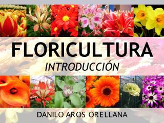 I._Intro_Floricultura_2013.pdf