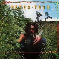 Peter Tosh - 03 - Whatcha Gonna Do.mp3