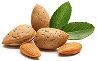 want-flu-heal-faster-eat-almond